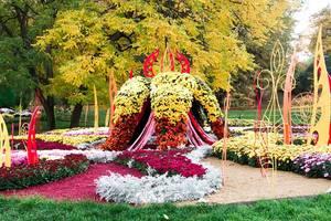 Киевляне выбрали лучшую композицию на выставке хризантем
