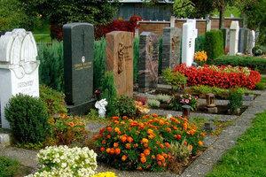 Ученые предложили лучший способ захоронения людей после смерти