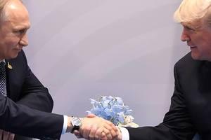 Соцсети о встрече Путина с Трампом: Я так общаюсь с собаками