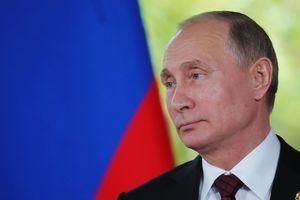 Путин провел телефонный разговор с главарями боевиков