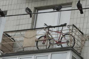У россиянина украли велосипед, который он украл, чтобы отвезти краденный телевизор
