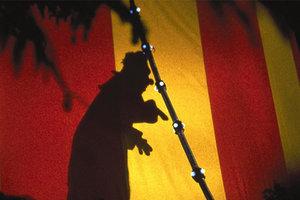 В Днепре зоощитники пикетировали цирк