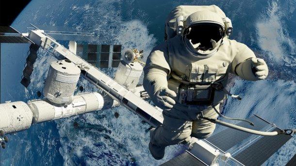 Нужно больше образцов: NASA планирует ставить вкосмосе опыты налюдях