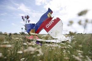 В Голландии разразился скандал из-за подставного свидетеля падения боинга МН17.