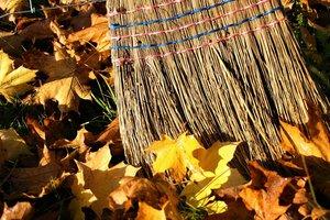Жители Одессы убрали листья и стекло в Летнем театре в Горсаду
