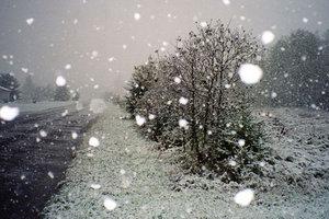 Непогода в Украине: запад и восток встретили зиму