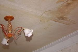 Жители Днепра пожаловались на сырость, грибок и мокрые обои в доме