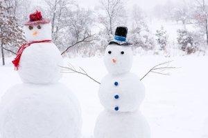 Мало снега и небольшой мороз: ученые рассказали, какой будет зима в Украине