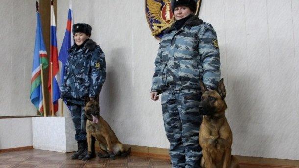 Единственные в РФ клоны Джек иТом поступили наслужбу вЯкутии