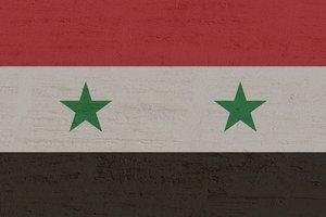 В Сирии проведут олимпиаду по русскому языку