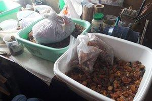 У Рівненській області вилучили понад тонну бурштину, вартістю 10 мільйонів