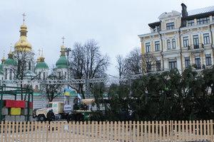Доставка головної ялинки країни обійшлася в 100 тисяч