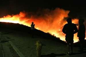 У Каліфорнії вирують найпотужніші лісові пожежі: Лос-Анджелес ввів режим надзвичайного стану