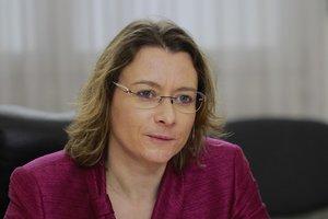 Ситуация вокруг НАБУ и антикоррупционного суда: в МИД Франции сделали заявление
