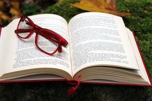 Кури-гриль і жуки-прибульці - 5 книжок про еміграцію