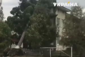 На Прикарпатье ураган оставил без электричества 25 сел