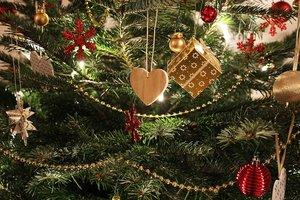 В Украине создали приложение для проверки новогодних елок