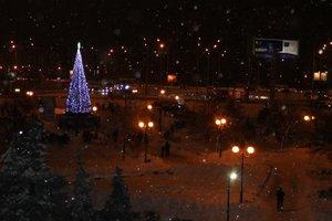 """Главные елки в районах Киева: где можно сделать яркое селфи и послушать """"поющее"""" дерево"""