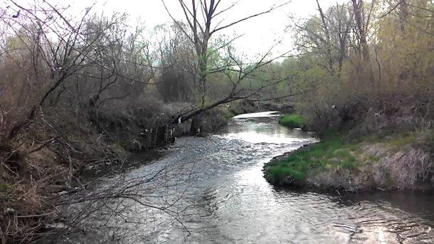 Река Тисменица, где появились маслянистые загрязнения. Фото: youtube.com