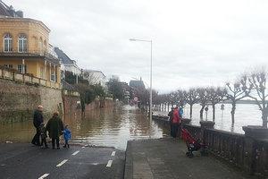 В Германии Рейн вышел из берегов посреди зимы