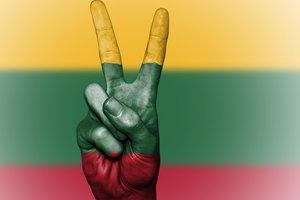 Литва запретила въезд 49 россиянам за отмывание денег