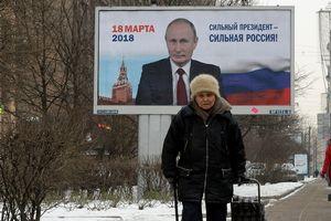 """ВЦИОМ """"предсказал"""" точный процент победы Путина на выборах"""