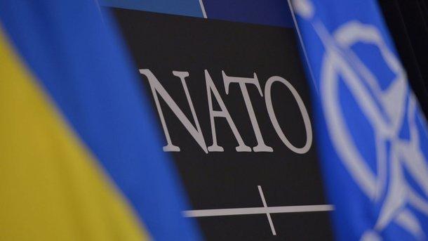 На совещании Военного комитета НАТО заслушают информацию оГрузии иУкраине