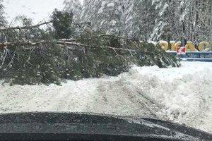 Украина в плену снежной стихии: спасатели рассказали о ситуациях на дорогах
