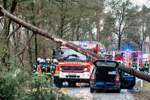 """В Европе свирепствует """"Фридерике"""": жертвами урагана стали восемь человек"""