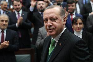 Эрдоган обещает скорое завершение операции против курдов в Сирии