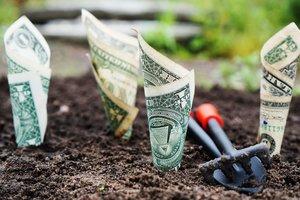 Бизнесмены по всему миру отказываются от иностранных инвестиций