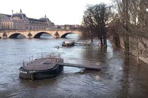 Уровень Сены в Париже продолжает повышаться