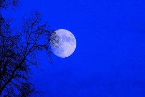 Три в одном: сегодня можно будет наблюдать суперлуние, лунное затмение и голубую Луну
