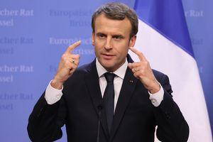 Talks of Him and Putin on Ukraine: Paris details revealed