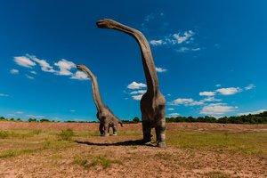 Ученые назвали причину Великого вымирания видов