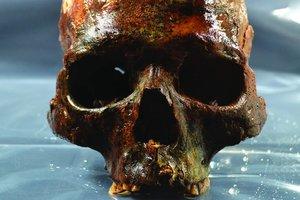 Археологи под водой обнаружили могилу со странными человеческими черепами