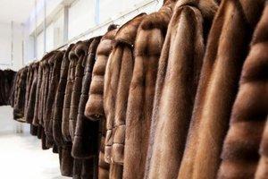 В России муж украл для жены шубу, потому, что ее куртку тоже украли