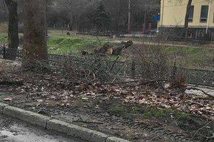 По дому в грязных сапогах: в сети показали действия оккупантов в Симферополе