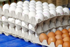 Food in Ukraine: what will be the price in March