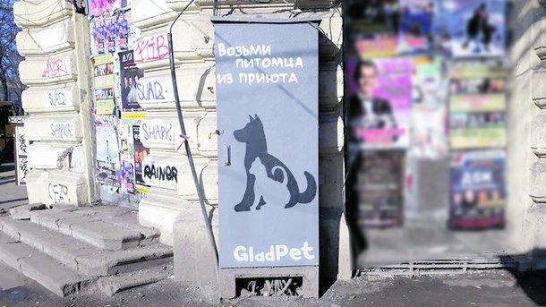 Ради животных. Фото: facebook.com