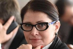 MP Vries explained why Ukraine the law on national security