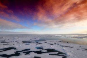 На 30 градусов выше нормы: в Арктике зафиксирована аномально высокая температура