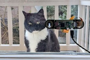 A Dutch engineer has taught a neural network to learn his cat