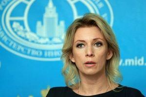 Секс-скандал с депутатом Слуцким: представитель МИД РФ Захарова рассказала, как отстояла свою честь