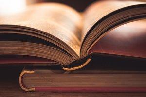 Майстри на всі руки – 5 книг про злодіїв і людей