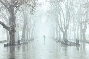 Одесса в тумане: непогода парализовала аэропорт и порты