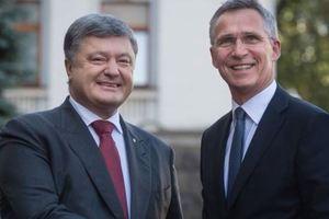 Как это - быть аспирантом НАТО: что значит новый статус и светит ли Украине ПДЧ