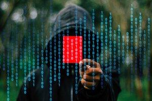 Ukrainian hackers have earned the German logistics company 1.5 million euros