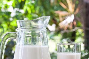 Какие продукты ни в коем случае нельзя употреблять с молоком