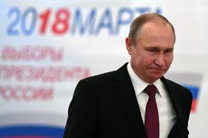 В России подсчитали четверть бюллетеней